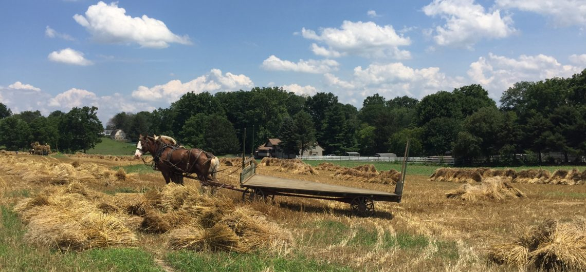 Philadelphia-Amish-Country-Tour